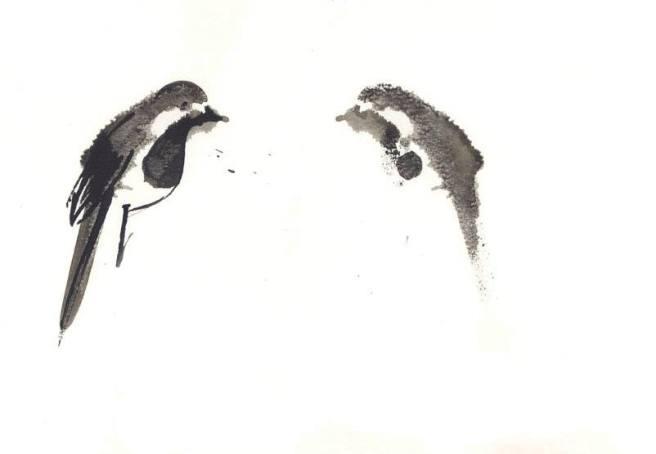 לוסי אלקויטי, נחליאלי, 2018, הדפס על נייר צילום