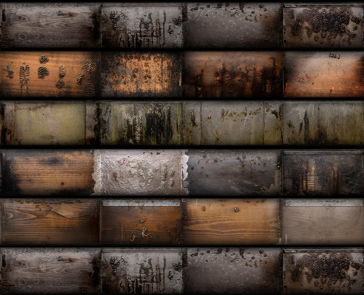 אנה פרומצנקו,החפיר, 2020, הדפסת דיו פיגמנטי